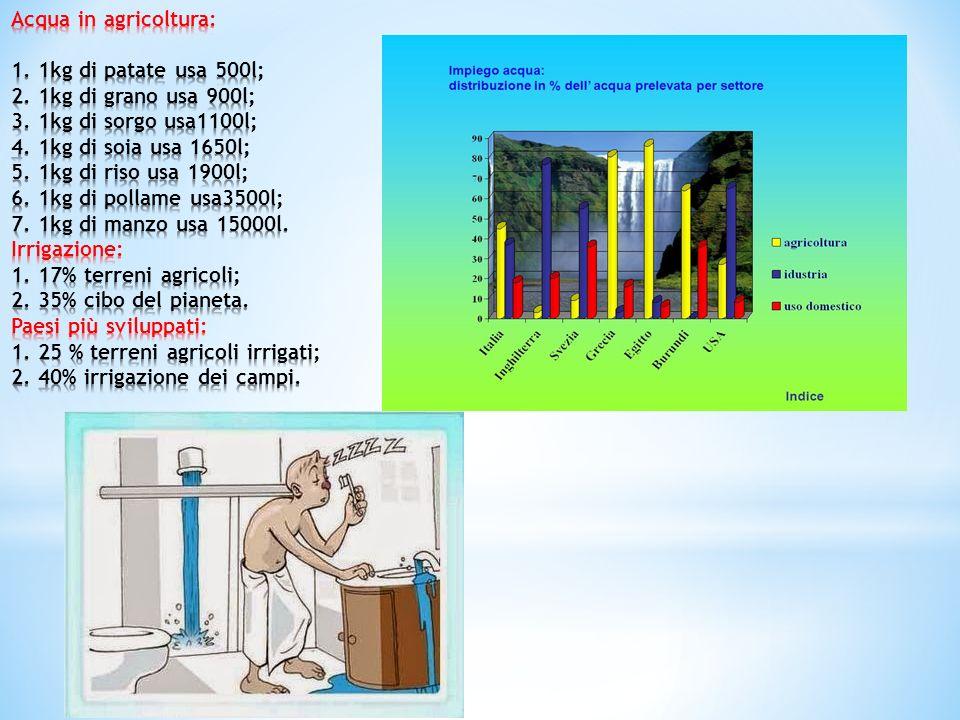 Acqua in agricoltura: 1. 1kg di patate usa 500l; 2