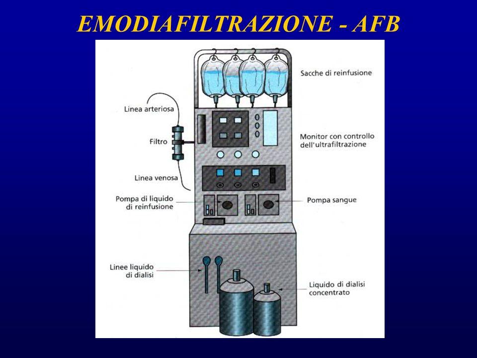 EMODIAFILTRAZIONE - AFB