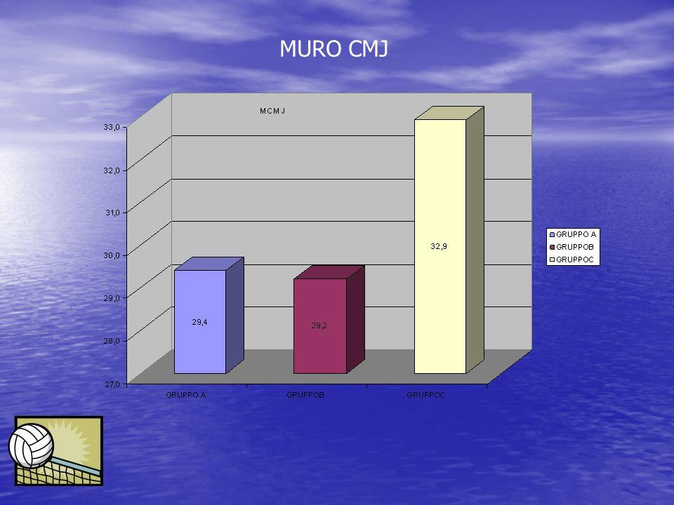 MURO CMJ