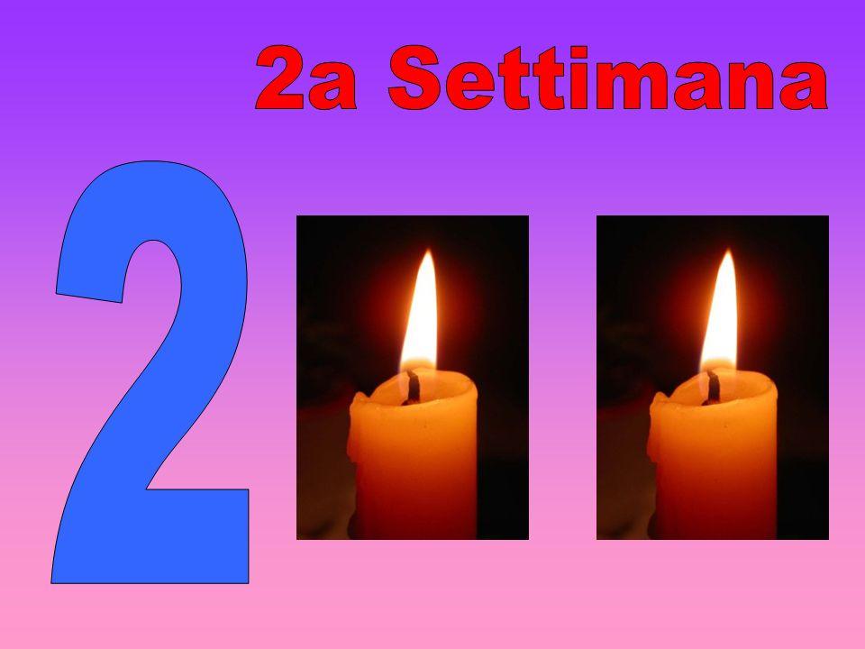 2a Settimana 2