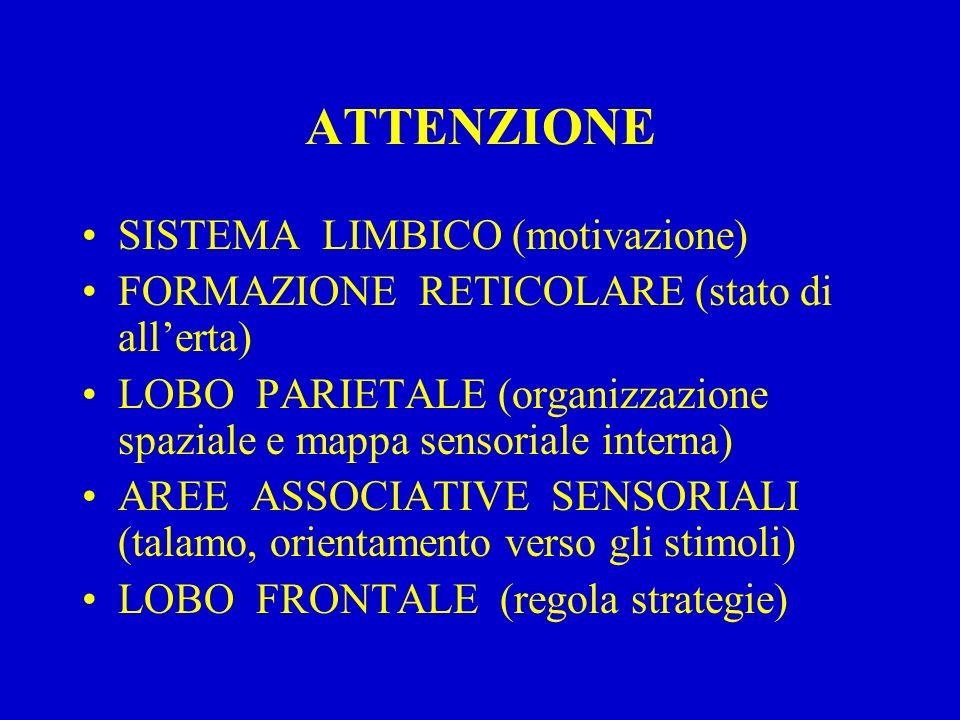ATTENZIONE SISTEMA LIMBICO (motivazione)