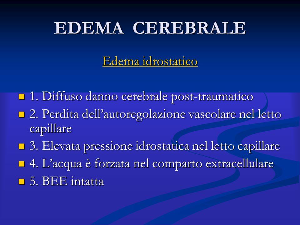 EDEMA CEREBRALE Edema idrostatico