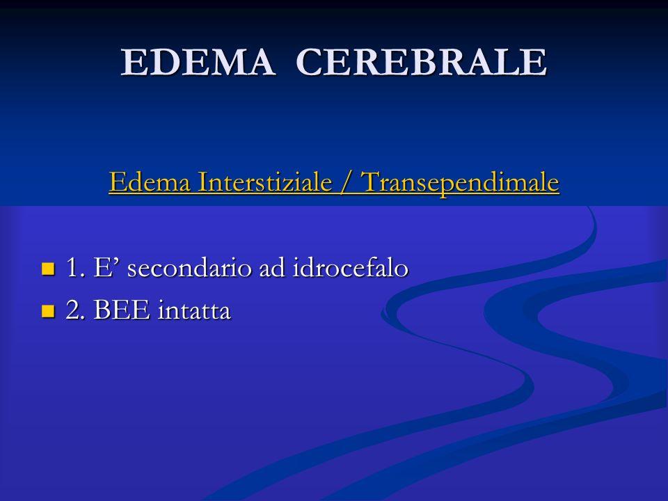 Edema Interstiziale / Transependimale