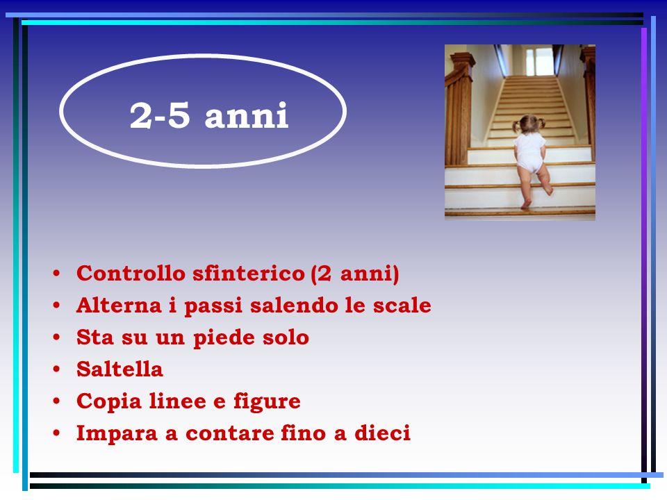 2-5 anni Controllo sfinterico (2 anni)