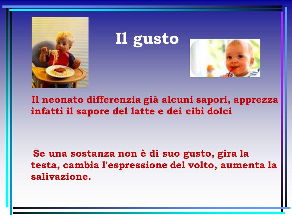 Il gusto Il neonato differenzia già alcuni sapori, apprezza infatti il sapore del latte e dei cibi dolci.