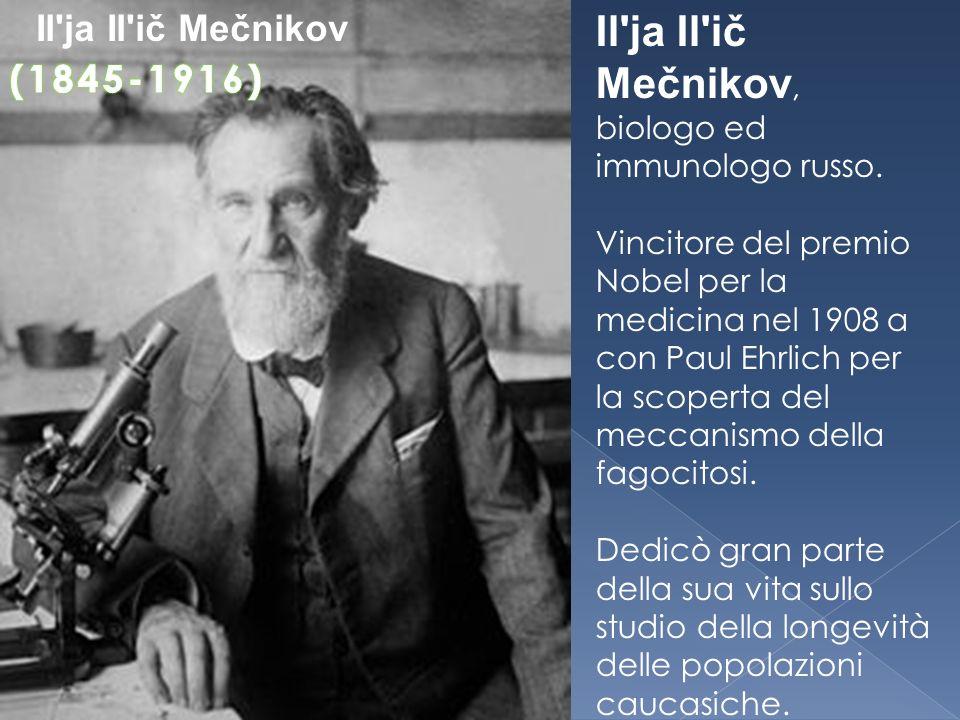 Il ja Il ič Mečnikov, Il ja Il ič Mečnikov (1845-1916)