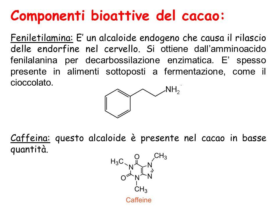 Componenti bioattive del cacao: