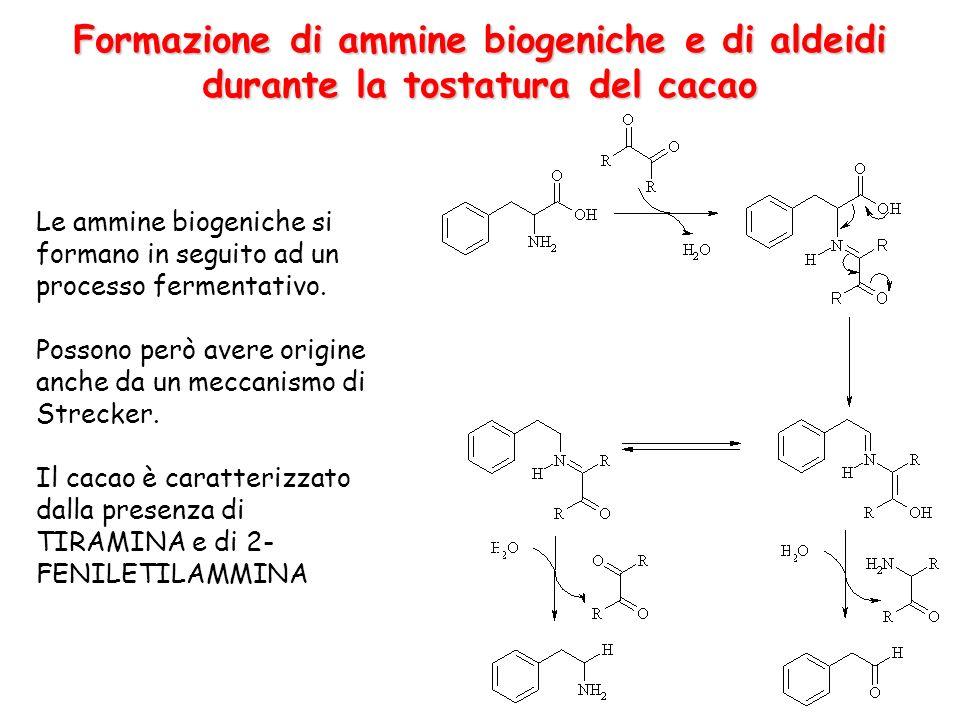 Formazione di ammine biogeniche e di aldeidi durante la tostatura del cacao