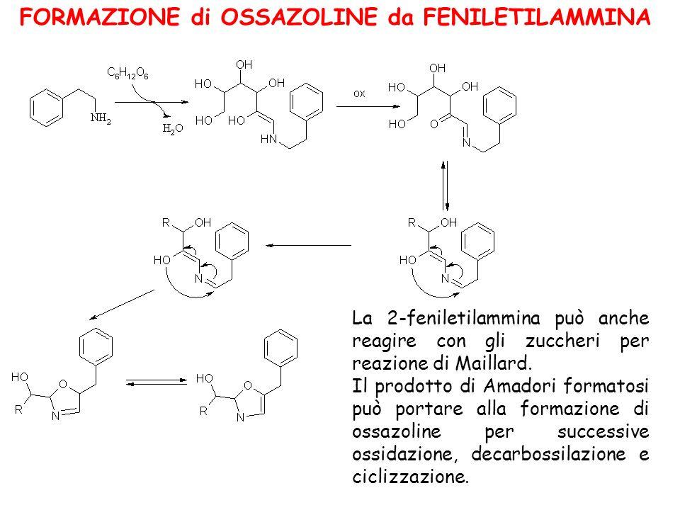 FORMAZIONE di OSSAZOLINE da FENILETILAMMINA