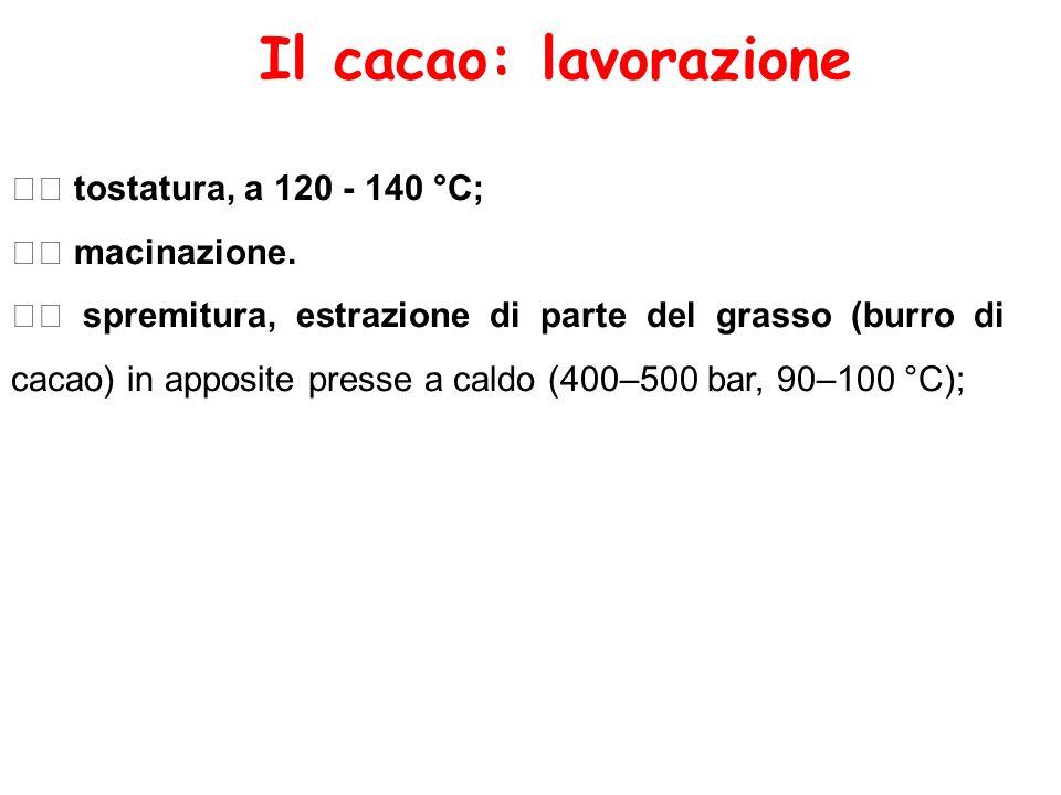 Il cacao: lavorazione  tostatura, a 120 - 140 °C;  macinazione.