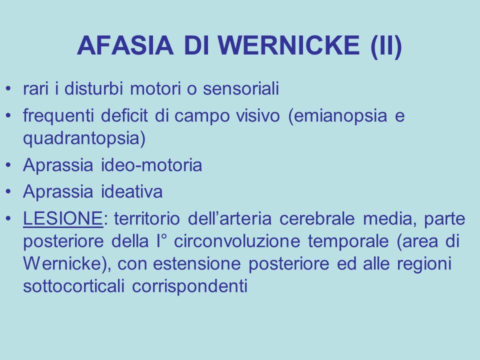 AFASIA DI WERNICKE (II)