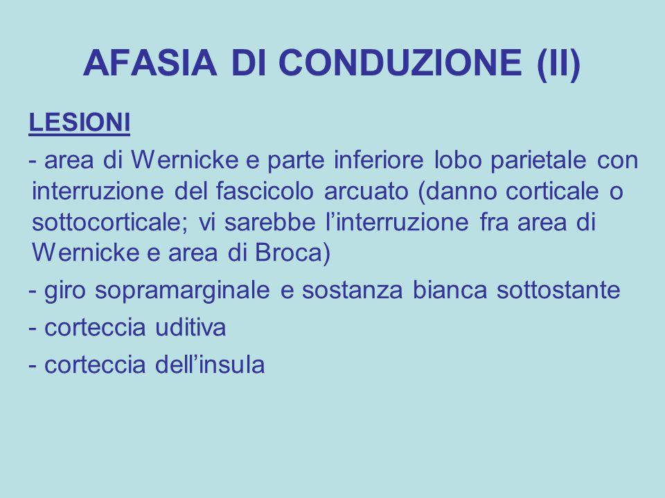 AFASIA DI CONDUZIONE (II)