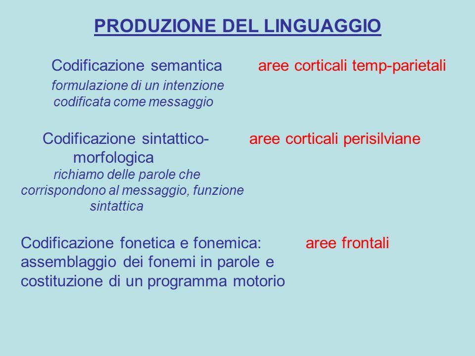 PRODUZIONE DEL LINGUAGGIO