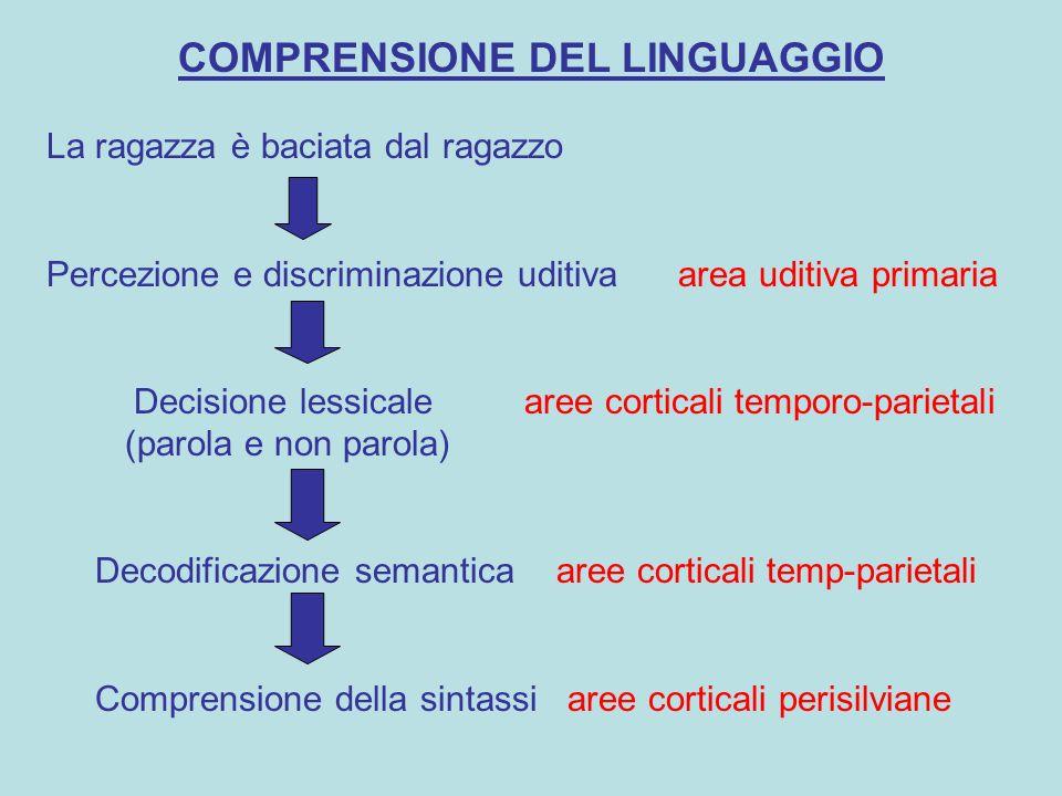 COMPRENSIONE DEL LINGUAGGIO