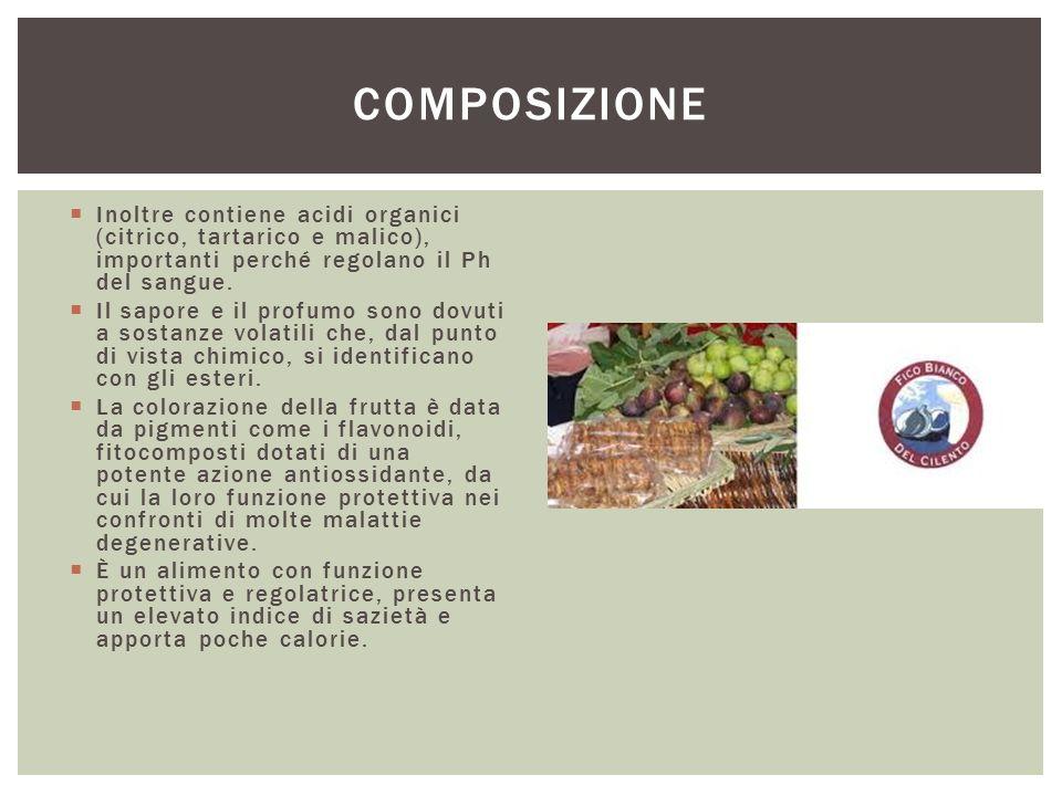 Composizione Inoltre contiene acidi organici (citrico, tartarico e malico), importanti perché regolano il Ph del sangue.