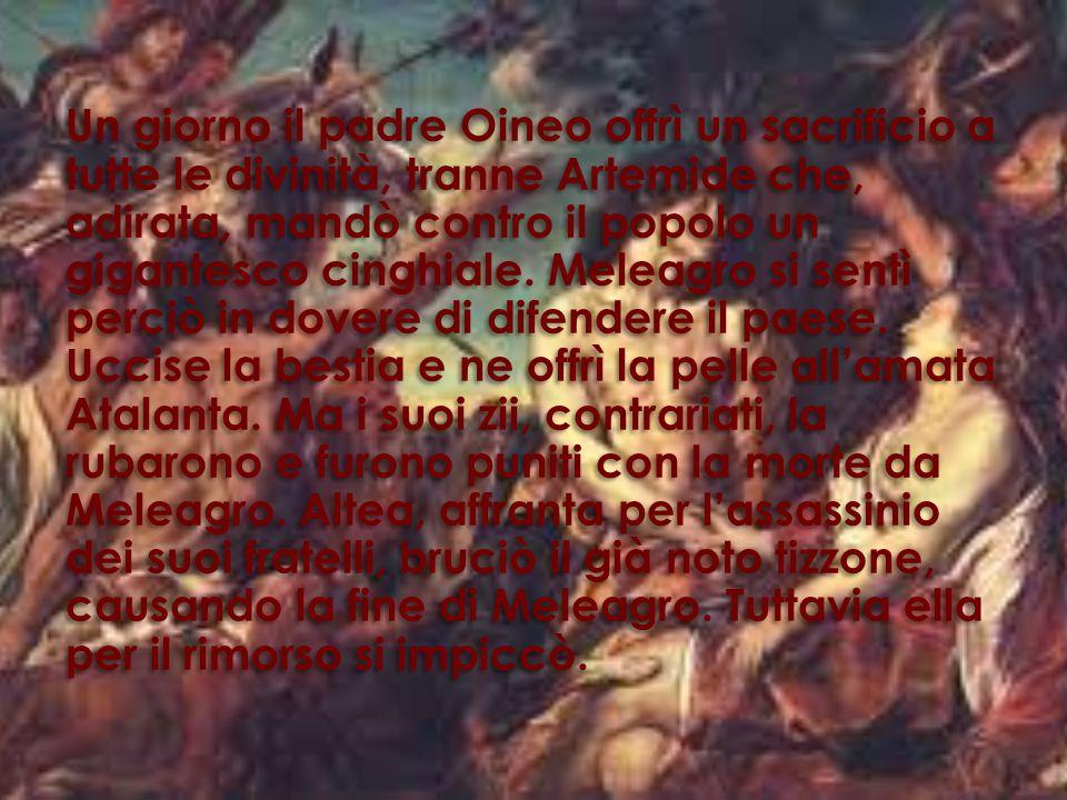 Un giorno il padre Oineo offrì un sacrificio a tutte le divinità, tranne Artemide che, adirata, mandò contro il popolo un gigantesco cinghiale.