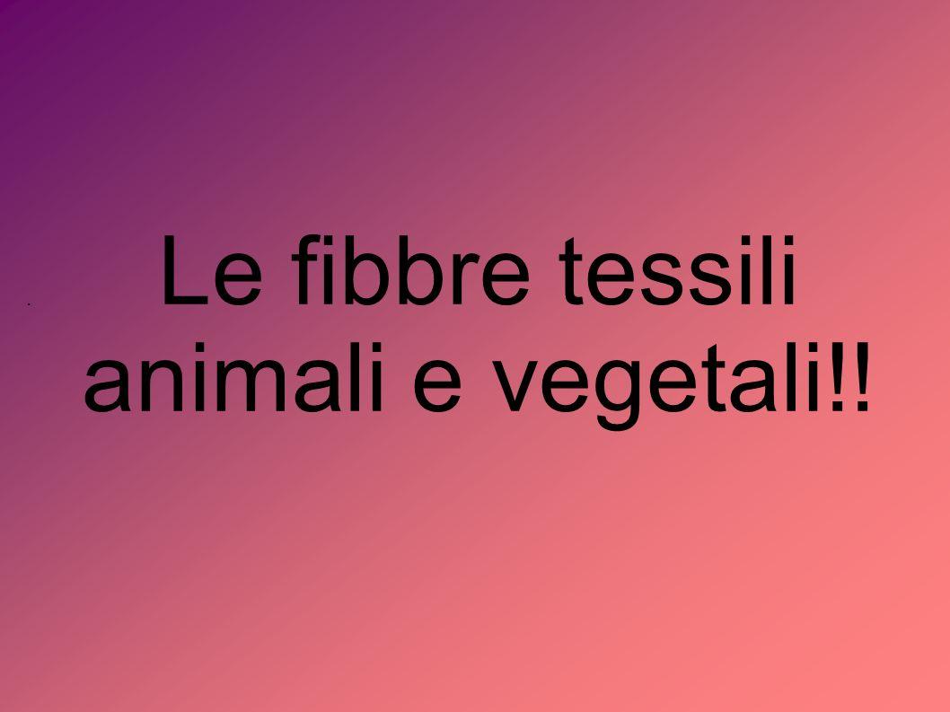 Le fibbre tessili animali e vegetali!!