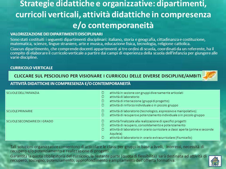 Strategie didattiche e organizzative: dipartimenti, curricoli verticali, attività didattiche in compresenza e/o contemporaneità