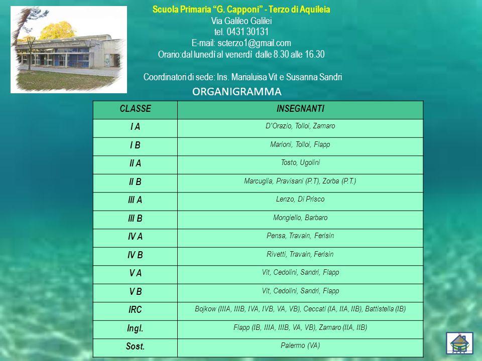 ORGANIGRAMMA CLASSE INSEGNANTI I A I B II A II B III A III B IV A IV B