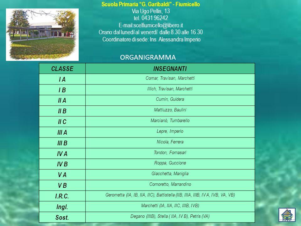 ORGANIGRAMMA CLASSE INSEGNANTI I A I B II A II B II C III A III B IV A