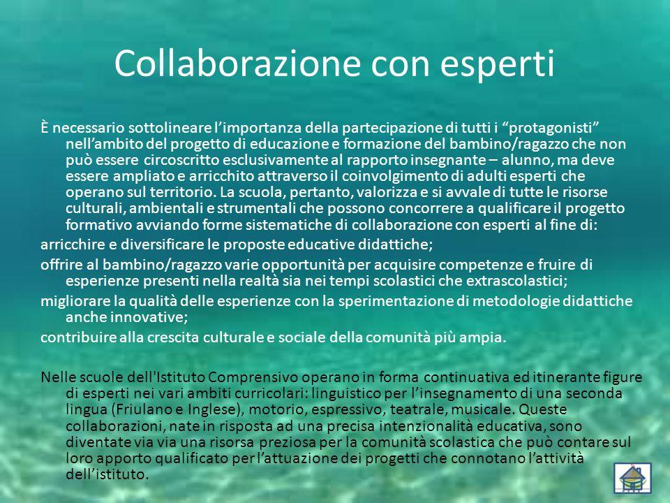 Collaborazione con esperti