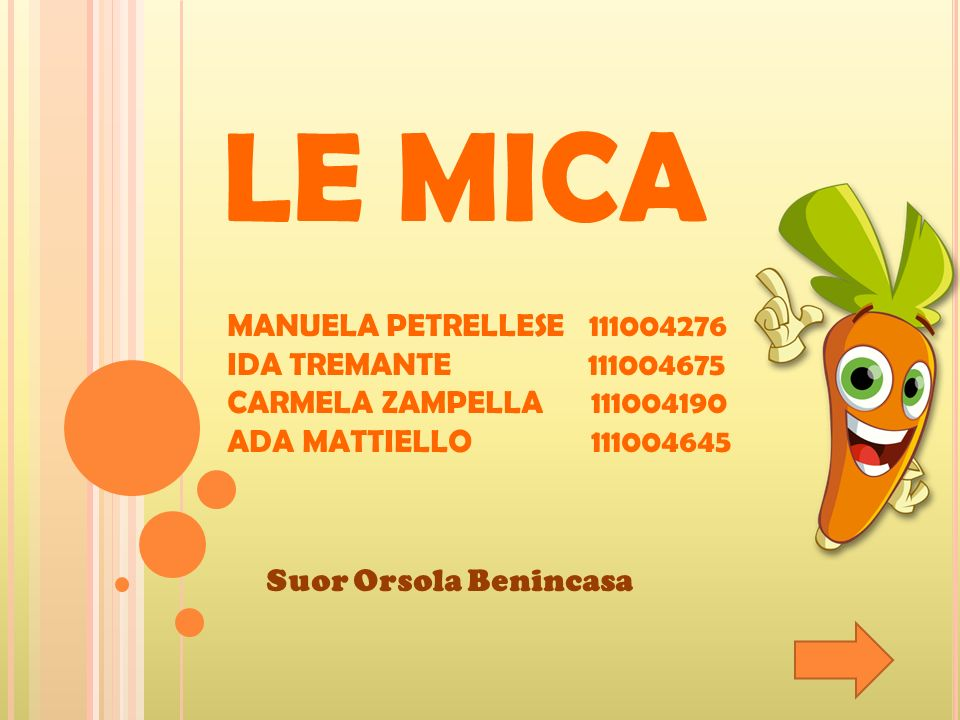 LE MICA MANUELA PETRELLESE 111004276 IDA TREMANTE 111004675