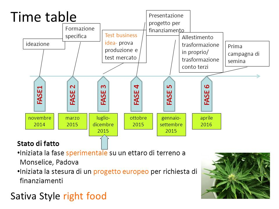 Time table Sativa Style right food FASE1 FASE 2 FASE 3 FASE 4 FASE 5