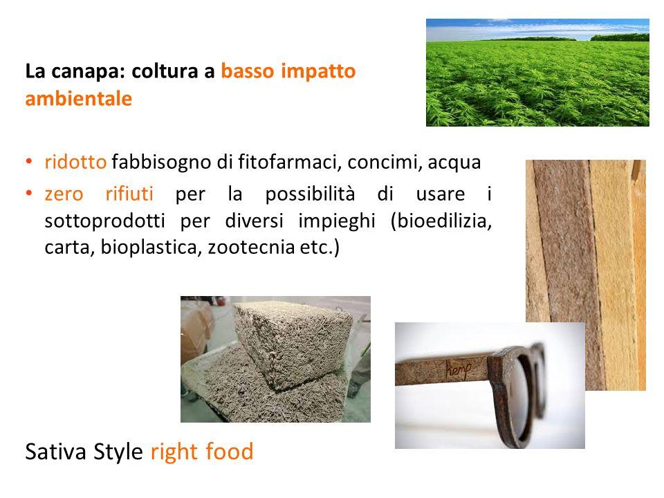 La canapa: coltura a basso impatto ambientale