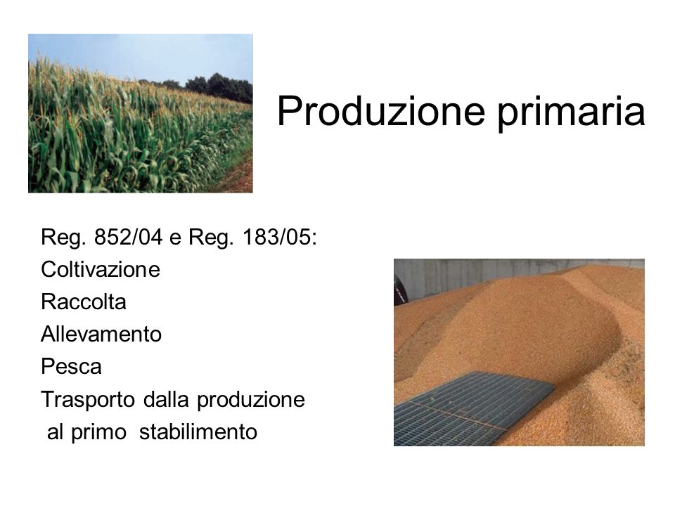 Produzione primaria Reg. 852/04 e Reg. 183/05: Coltivazione Raccolta