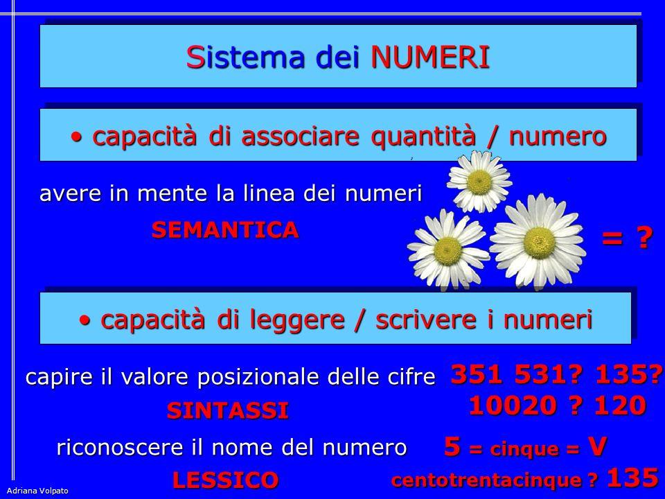 Sistema dei NUMERI = capacità di associare quantità / numero