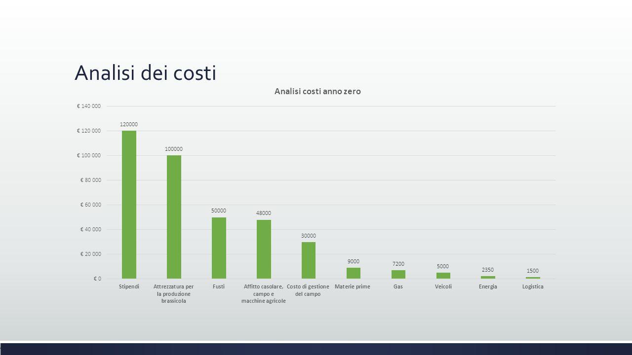 Analisi dei costi