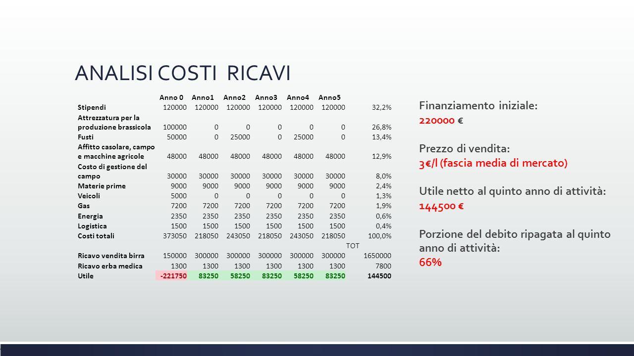 ANALISI COSTI RICAVI Finanziamento iniziale: 220000 €