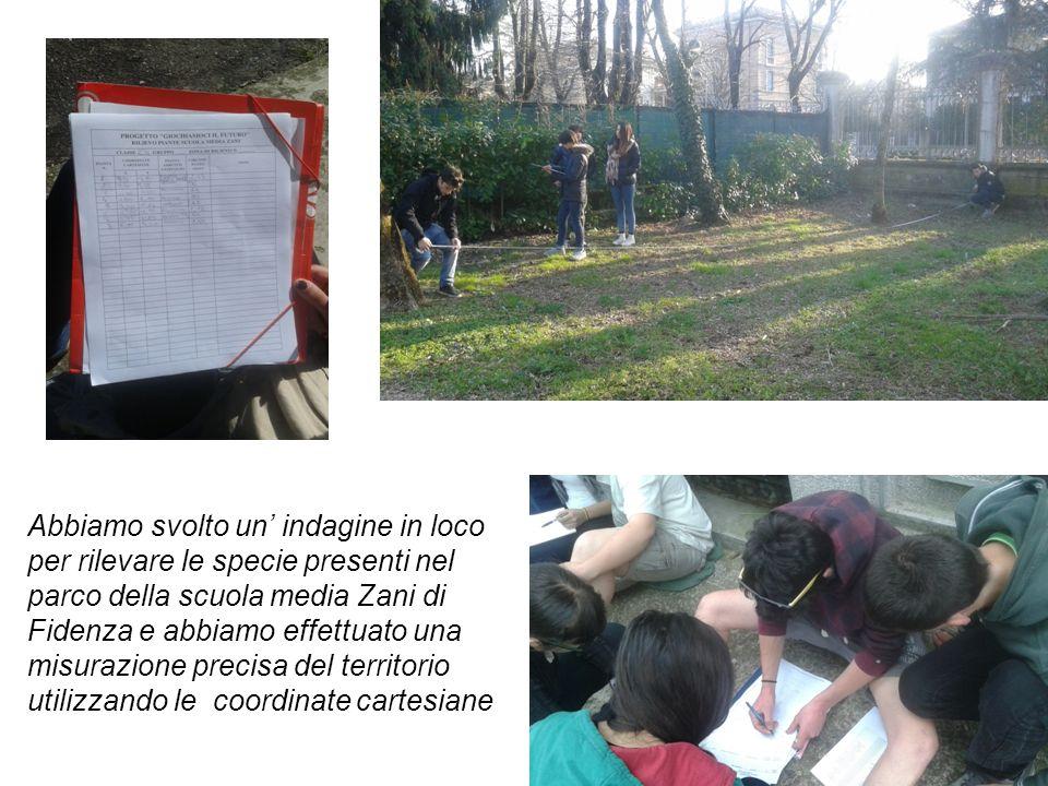 Abbiamo svolto un' indagine in loco per rilevare le specie presenti nel parco della scuola media Zani di Fidenza e abbiamo effettuato una misurazione precisa del territorio utilizzando le coordinate cartesiane