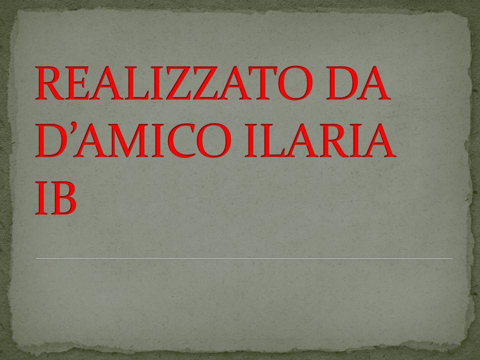 REALIZZATO DA D'AMICO ILARIA IB