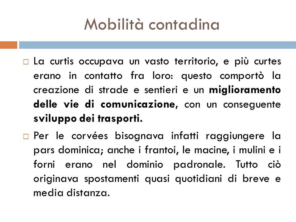 Mobilità contadina
