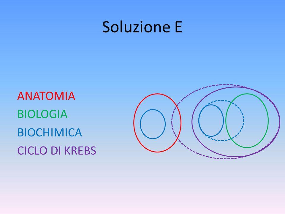 Soluzione E ANATOMIA BIOLOGIA BIOCHIMICA CICLO DI KREBS