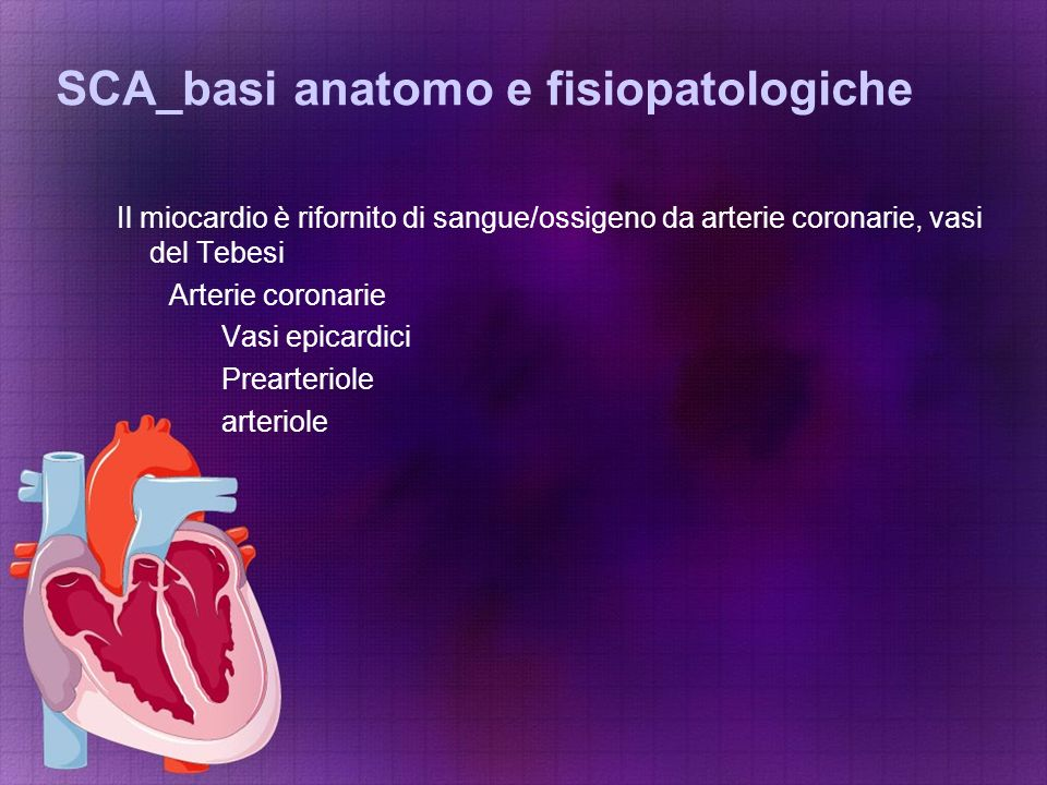 SCA_basi anatomo e fisiopatologiche