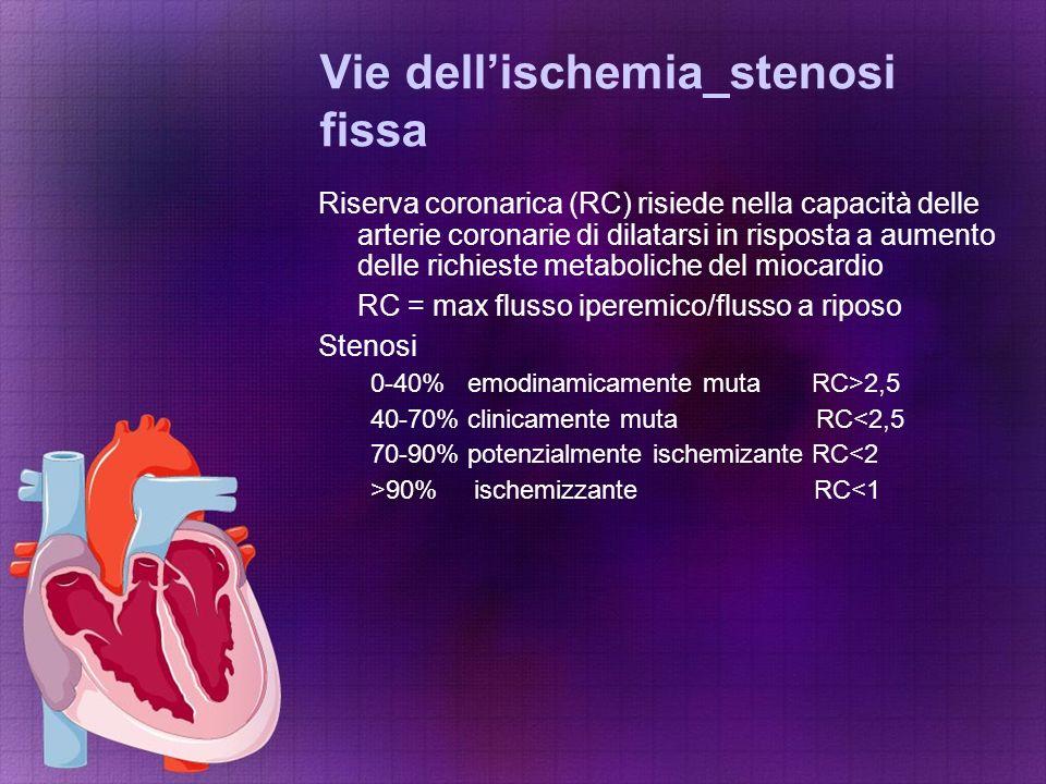 Vie dell'ischemia_stenosi fissa