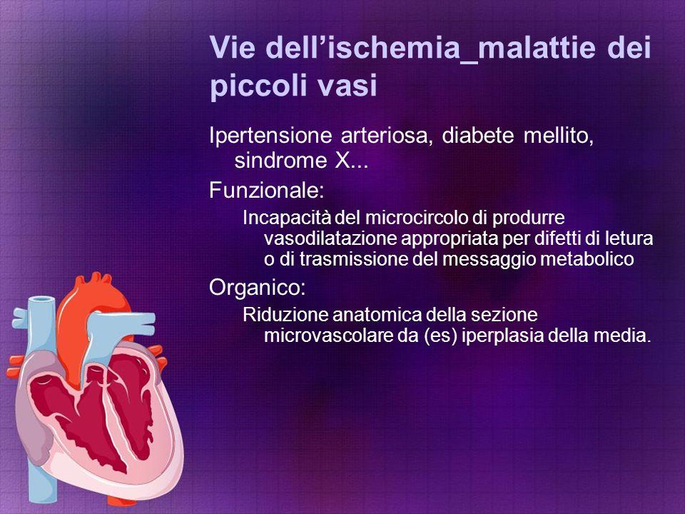 Vie dell'ischemia_malattie dei piccoli vasi