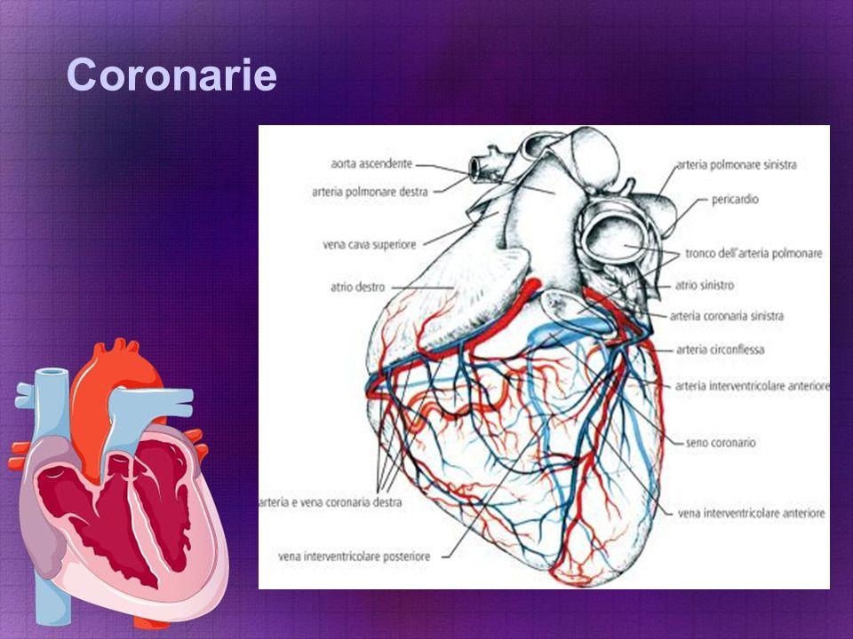 Coronarie
