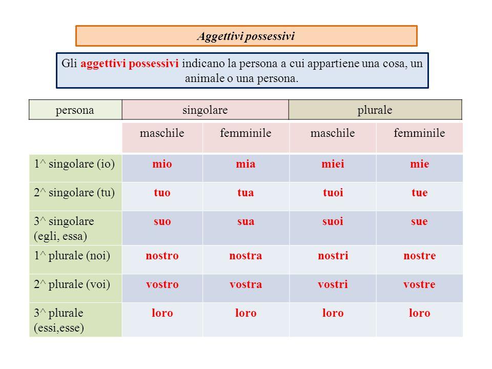 Aggettivi possessivi Gli aggettivi possessivi indicano la persona a cui appartiene una cosa, un animale o una persona.