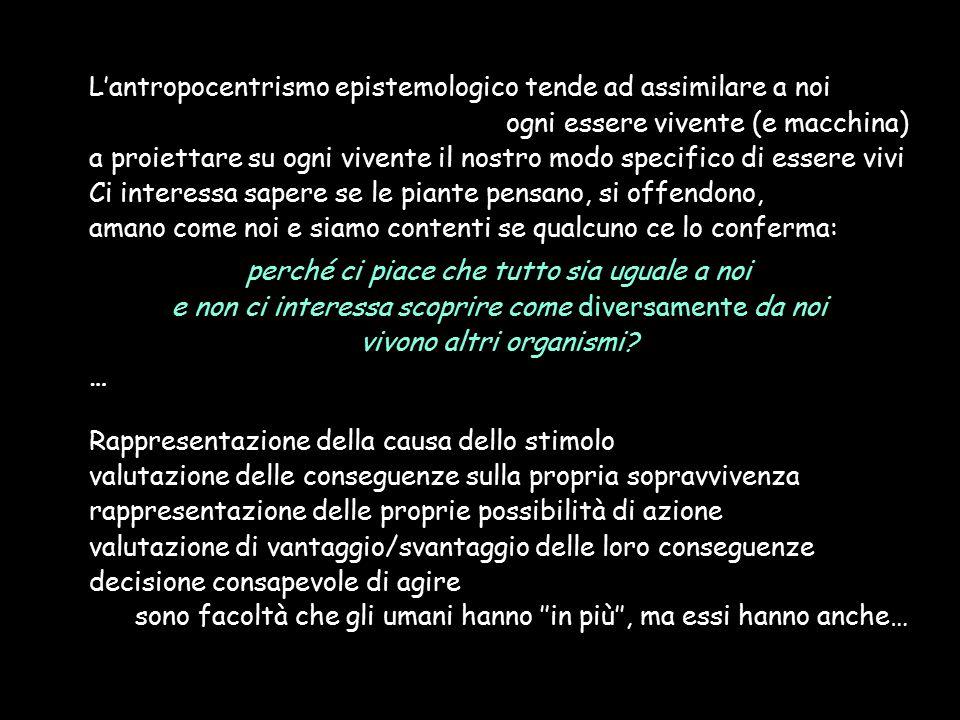L'antropocentrismo epistemologico tende ad assimilare a noi