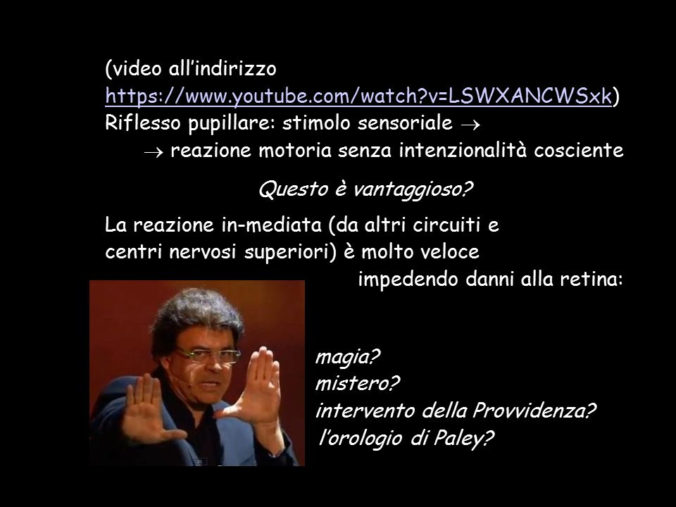 (video all'indirizzo https://www.youtube.com/watch v=LSWXANCWSxk)