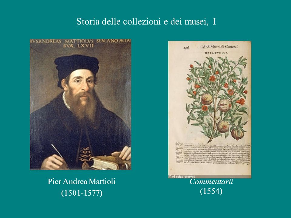 Storia delle collezioni e dei musei, I