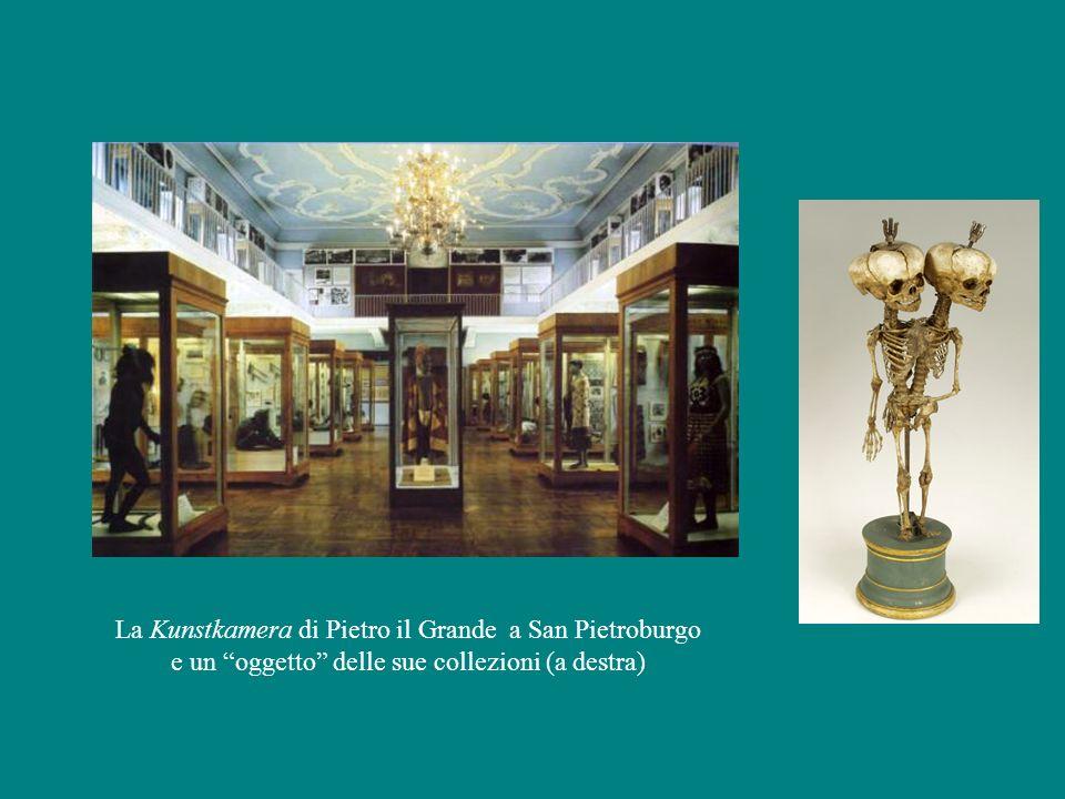 La Kunstkamera di Pietro il Grande a San Pietroburgo