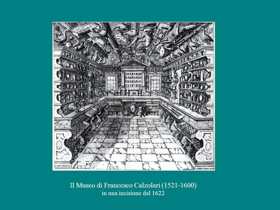 Il Museo di Francesco Calzolari (1521-1600)