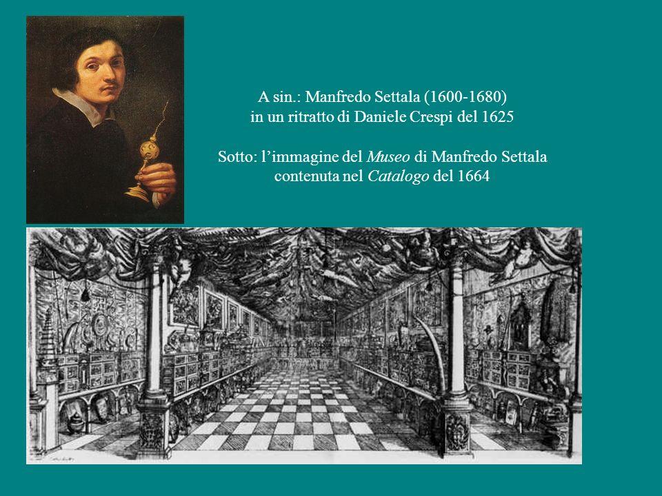 A sin.: Manfredo Settala (1600-1680)