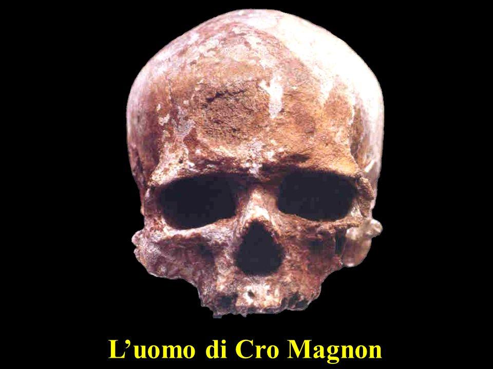 L'uomo di Cro Magnon