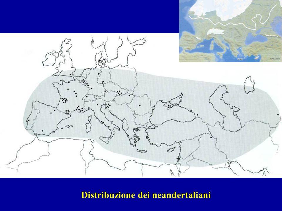 Distribuzione dei neandertaliani