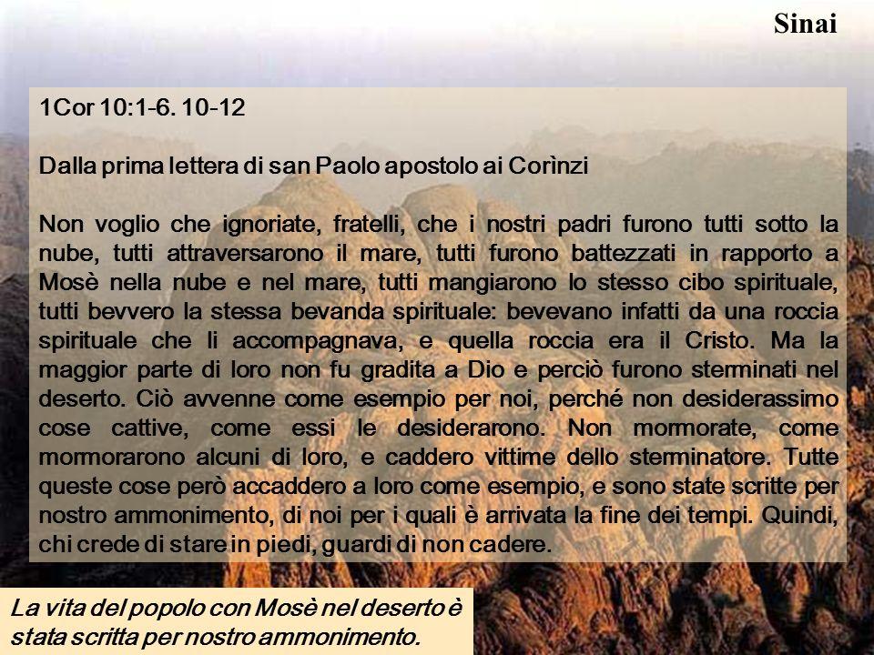 Sinai 1Cor 10:1-6. 10-12. Dalla prima lettera di san Paolo apostolo ai Corìnzi.